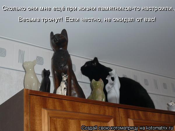 Котоматрица: Сколько они мне ещё при жизни памятников-то настроили...  Весьма тронут! Если честно, не ожидал от вас!