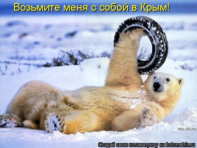 Котоматрица: Возьмите меня с собой в Крым!