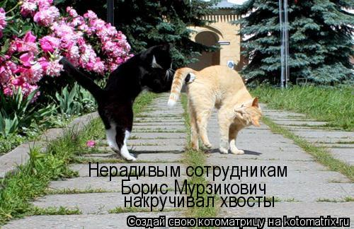Котоматрица: Нерадивым сотрудникам  Борис Мурзикович  накручивал хвосты