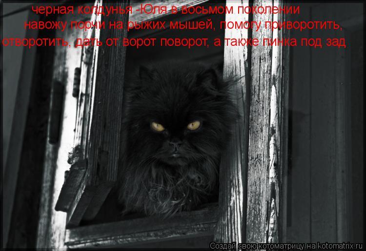 Котоматрица: черная колдунья -Юля в восьмом поколении навожу порчи на рыжих мышей, помогу приворотить,  отворотить, дать от ворот поворот, а также пинка п