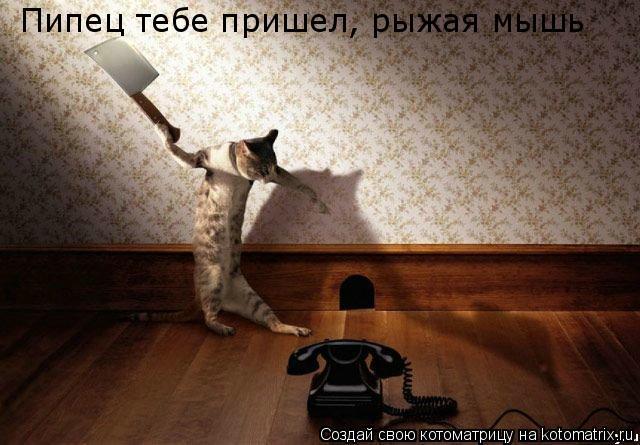 Котоматрица: Пипец тебе пришел, рыжая мышь