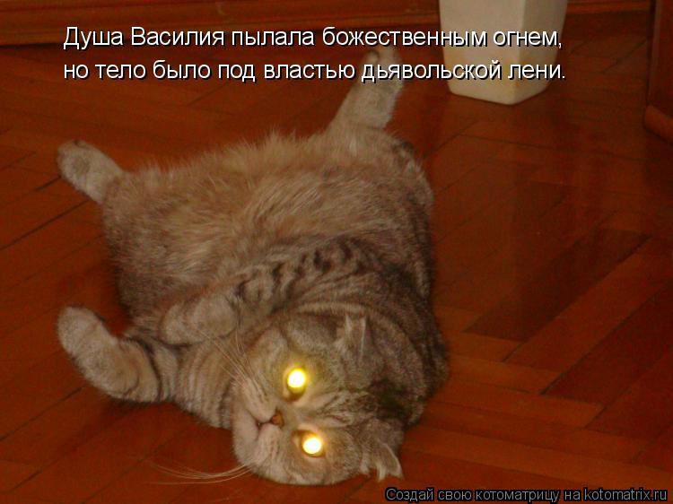 Котоматрица: Душа Василия пылала божественным огнем, но тело было под властью дьявольской лени.