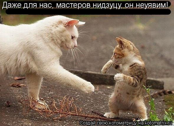 Котоматрица: Даже для нас, мастеров нидзуцу, он неуявим!