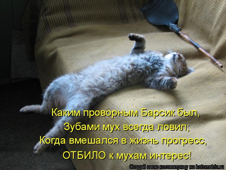 Котоматрица: Каким проворным Барсик был, Зубами мух всегда ловил; Когда вмешался в жизнь прогресс, ОТБИЛО к мухам интерес!