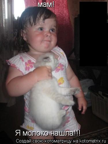 Котоматрица: мам! Я молоко нашла!!!