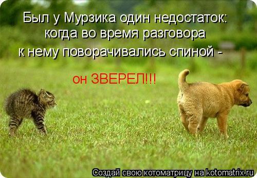 Котоматрица: Был у Мурзика один недостаток: когда во время разговора  к нему поворачивались спиной - он ЗВЕРЕЛ!!!