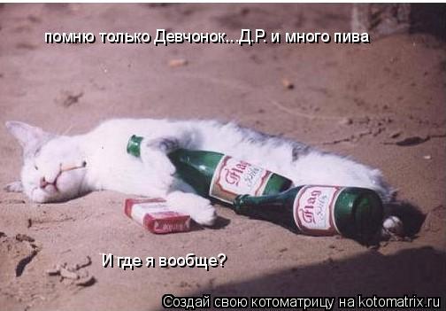 Котоматрица: помню только Девчонок...Д.Р. и много пива И где я вообще?