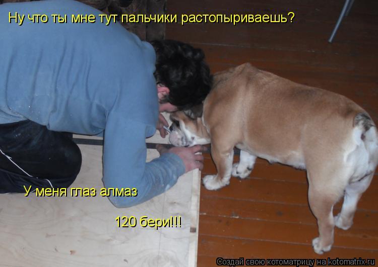 Котоматрица: Ну что ты мне тут пальчики растопыриваешь? У меня глаз алмаз 120 бери!!!