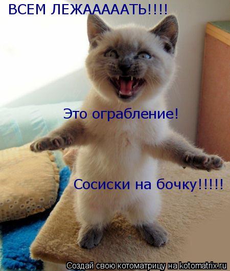 Котоматрица: ВСЕМ ЛЕЖАААААТЬ!!!!  Это ограбление! Сосиски на бочку!!!!!