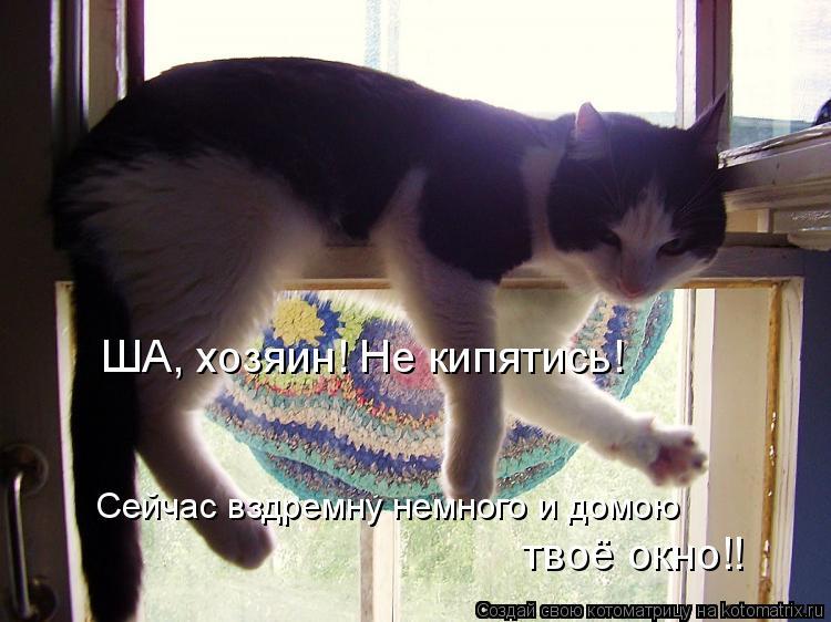 Котоматрица: ША, хозяин! Не кипятись!  Сейчас вздремну немного и домою  твоё окно!!