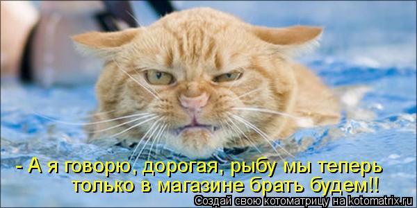 Котоматрица: - А я говорю, дорогая, рыбу мы теперь  только в магазине брать будем!!