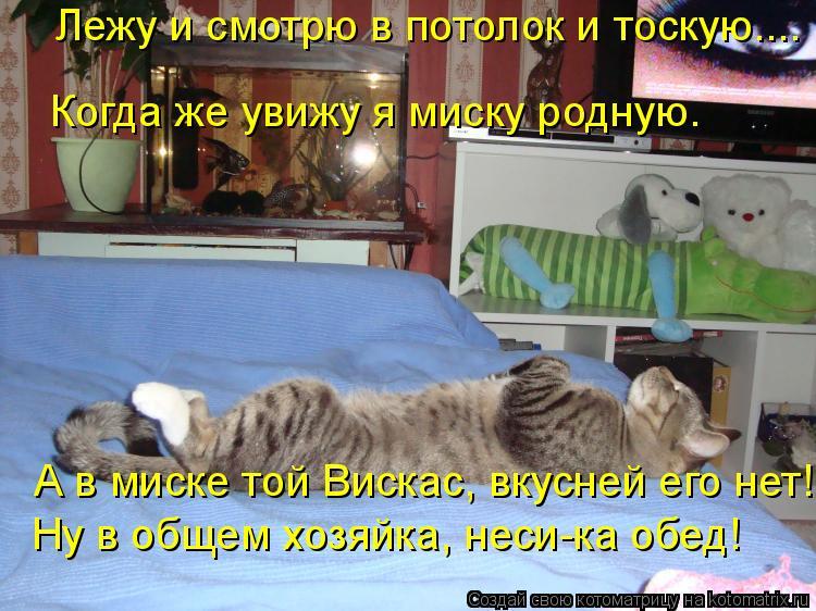 Котоматрица: Лежу и смотрю в потолок и тоскую.... Когда же увижу я миску родную. А в миске той Вискас, вкусней его нет! Ну в общем хозяйка, неси-ка обед!