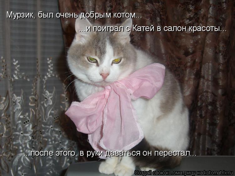 Котоматрица: Мурзик, был очень добрым котом... ...и поиграл с Катей в салон красоты...  ...после этого, в руки даваться он перестал...