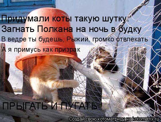 Котоматрица: Загнать Полкана на ночь в будку Придумали коты такую шутку: В ведре ты будешь, Рыжий, громко отвлекать А я примусь как призрак ПРЫГАТЬ И ПУГА