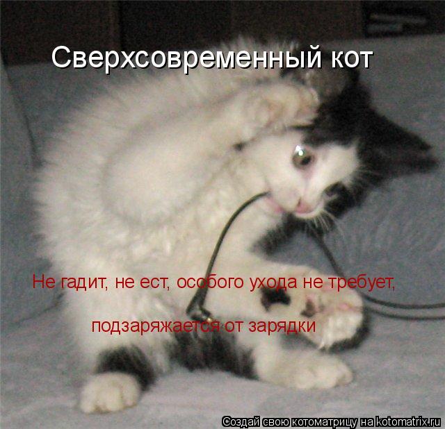 Котоматрица: Сверхсовременный кот Не гадит, не ест, особого ухода не требует,  подзаряжается от зарядки