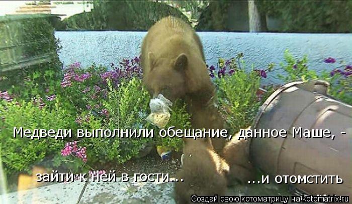 Котоматрица: Медведи выполнили обещание, данное Маше, - зайти к ней в гости... ...и отомстить