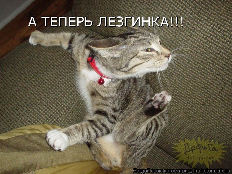 Котоматрица: А ТЕПЕРЬ ЛЕЗГИНКА!!!