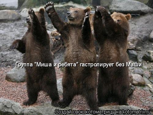"""Котоматрица: Группа """"Миша и ребята"""" гастролирует без Маши"""