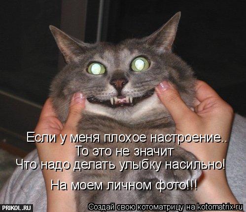 Котоматрица: Если у меня плохое настроение.. То это не значит Что мне надо делать улыбку насильно! Что надо делать улыбку насильно! На моем личном фото!!!