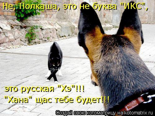 """Котоматрица: Не, Полкаша, это не буква """"ИКС"""", это русская """"Хэ""""!!! """"Хана"""" щас тебе будет!!!"""