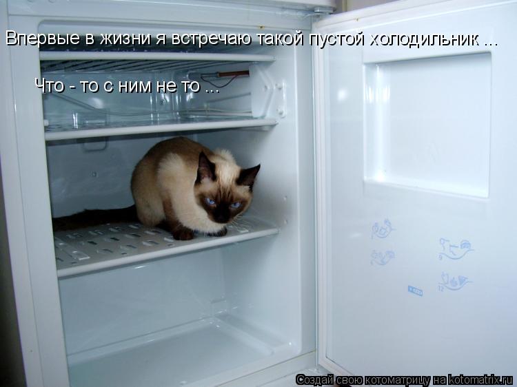 Котоматрица: Впервые в жизни я встречаю такой пустой холодильник ... Что - то с ним не то ...
