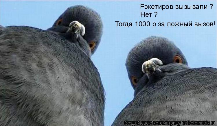 Котоматрица: Рэкетиров вызывали ? Нет ? Тогда 1000 р за ложный вызов!