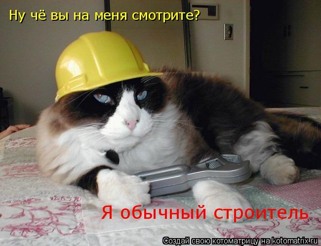 Котоматрица: Ну чё вы на меня смотрите? Я обычный строитель
