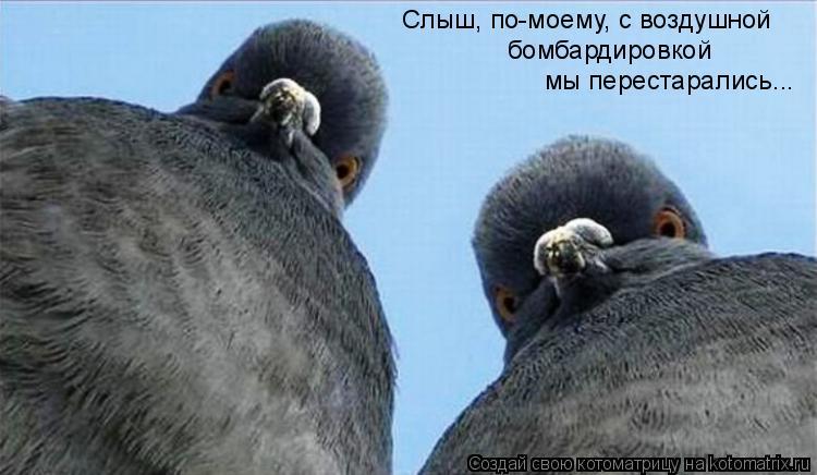 Котоматрица: Слыш, по-моему, с воздушной  бомбардировкой  мы перестарались...