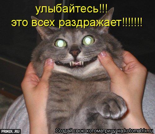 Котоматрица: улыбайтесь!!! это всех раздражает!!!!!!!