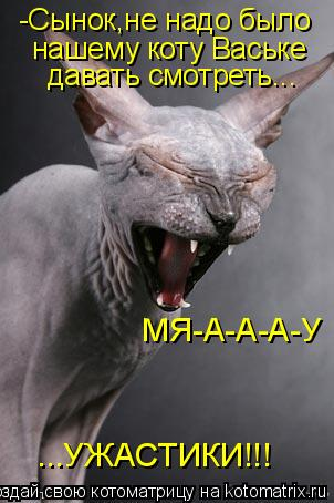 Котоматрица: -Сынок,не надо было нашему коту Ваське давать смотреть... ...УЖАСТИКИ!!! МЯ-А-А-А-У