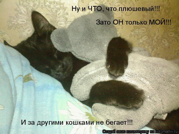 Котоматрица: Ну и ЧТО, что плюшевый!!! И за другими кошками не бегает!!! Зато ОН только МОЙ!!!