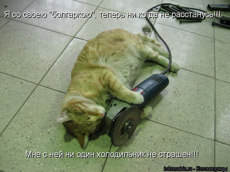 """Котоматрица: Я со своею """"болгаркою"""", теперь ни когда не расстанусь!!! Мне с ней ни один холодильник не страшен!!!"""