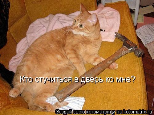 Котоматрица: Кто стучиться в дверь ко мне?