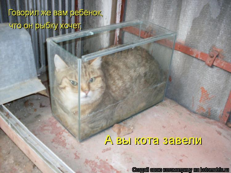 Котоматрица: Говорил же вам ребёнок, что он рыбку хочет, А вы кота завели