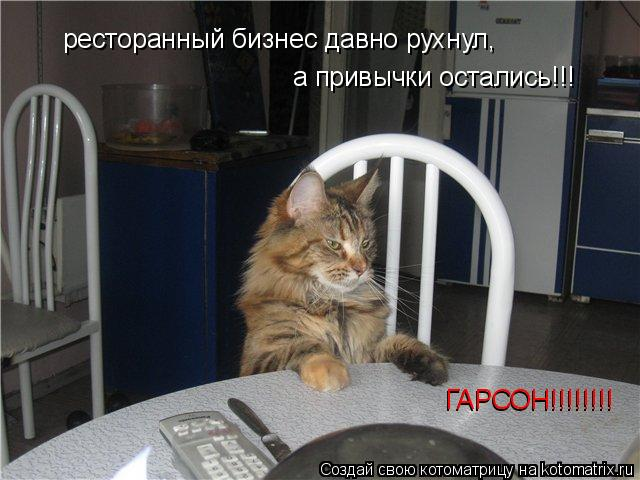 Котоматрица: ресторанный бизнес давно рухнул,  а привычки остались!!! ГАРСОН!!!!!!!! ГАРСОН!!!!!!!!