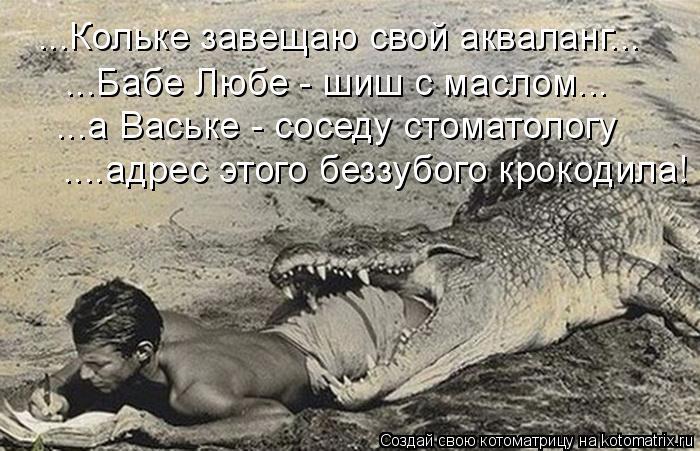 Котоматрица: ...Кольке завещаю свой акваланг... ...Бабе Любе - шиш с маслом... ...а Ваське - соседу стоматологу ....адрес этого беззубого крокодила!