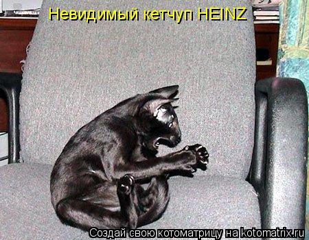 Котоматрица: Невидимый кетчуп HEINZ