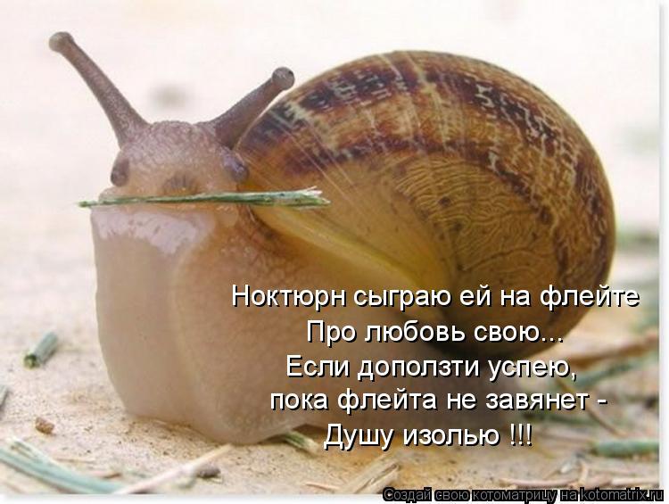 Котоматрица: Ноктюрн сыграю ей на флейте Про любовь свою... Если доползти успею, пока флейта не завянет - Душу изолью !!!