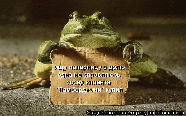 http://kotomatrix.ru/images/lolz/2010/06/23/610864.jpg