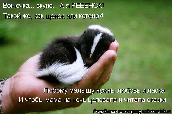 Котоматрица: Вонючка... скунс... А я РЕБЕНОК! Такой же, как щенок или котенок! Любому малышу нужны любовь и ласка И чтобы мама на ночь целовала и читала сказ