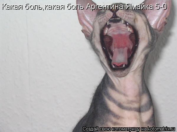 Котоматрица: Какая боль,какая боль Аргентина Ямайка 5-0