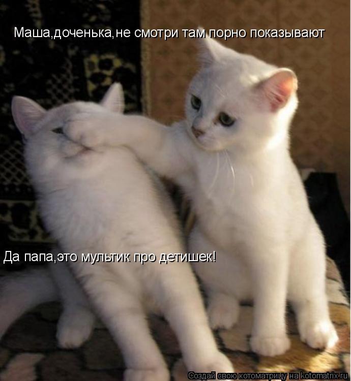 Котоматрица: Маша,доченька,не смотри там порно показывают Да папа,это мультик про детишек!