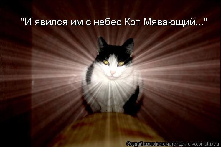 """Котоматрица: """"И явился им с небес Кот Мявающий..."""""""