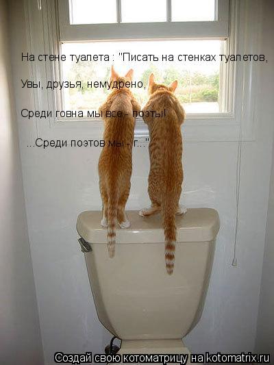 """Котоматрица: На стене туалета : """"Писать на стенках туалетов, Увы, друзья, немудрено,  Среди говна мы все - поэты!   ...Среди поэтов мы - г...""""."""