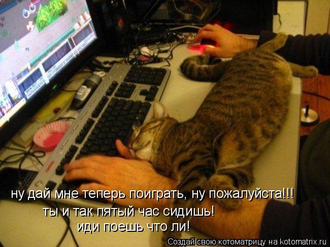 Котоматрица: ну дай мне теперь поиграть, ну пожалуйста!!! ты и так пятый час сидишь! иди поешь что ли!