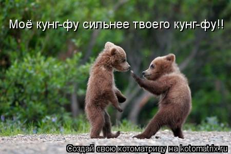 Котоматрица: Моё кунг-фу сильнее твоего кунг-фу!!