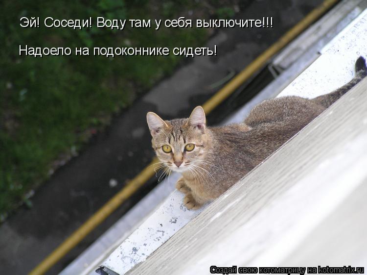 Котоматрица: Эй! Соседи! Воду там у себя выключите!!!  Надоело на подоконнике сидеть!
