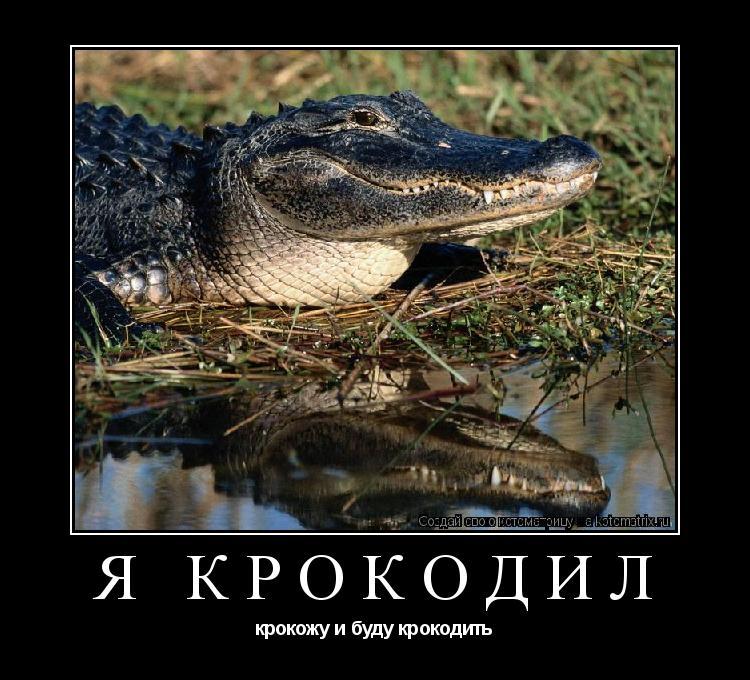 Котоматрица: Я крокодил крокожу и буду крокодить