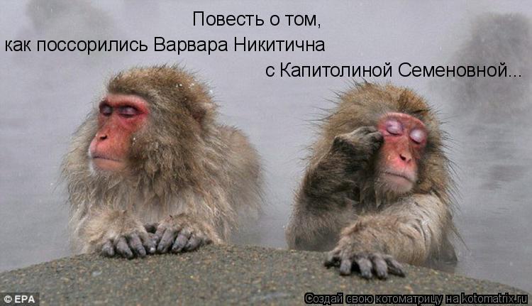 Котоматрица: с Капитолиной Семеновной... Повесть о том, как поссорились Варвара Никитична