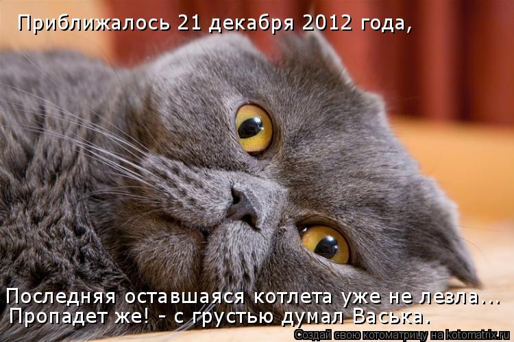 Котоматрица: Приближалось 21 декабря 2012 года, Последняя оставшаяся котлета уже не лезла... Пропадет же! - с грустью думал Васька.